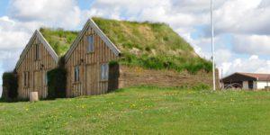 casa com telhado verde em um campo