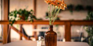 planta decorada em uma garrafa de plástico para simbolizar ideias de reciclagem para decoração da casa